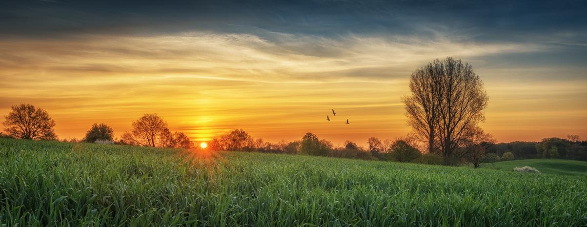 stativkunst-Spiel-mit-der-Sonne-Fotos-036