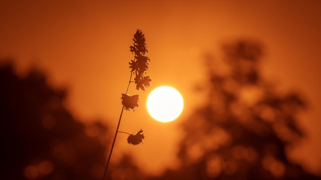 stativkunst-Spiel-mit-der-Sonne-Fotos-043