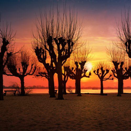 stativkunst-Spiel-mit-der-Sonne-Fotos-052