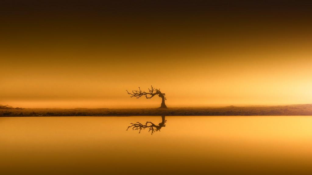Natur-in-Bildern-by-stativkunst.de-001
